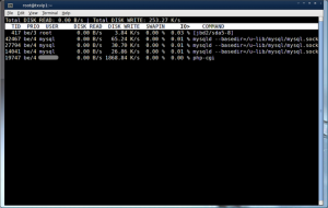Only See Process Eating Your Disk I/O
