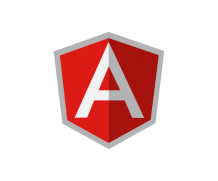 How to check the version of Angular JS ?