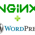How to fixe WordPress permalinks 404 error on Nginx server